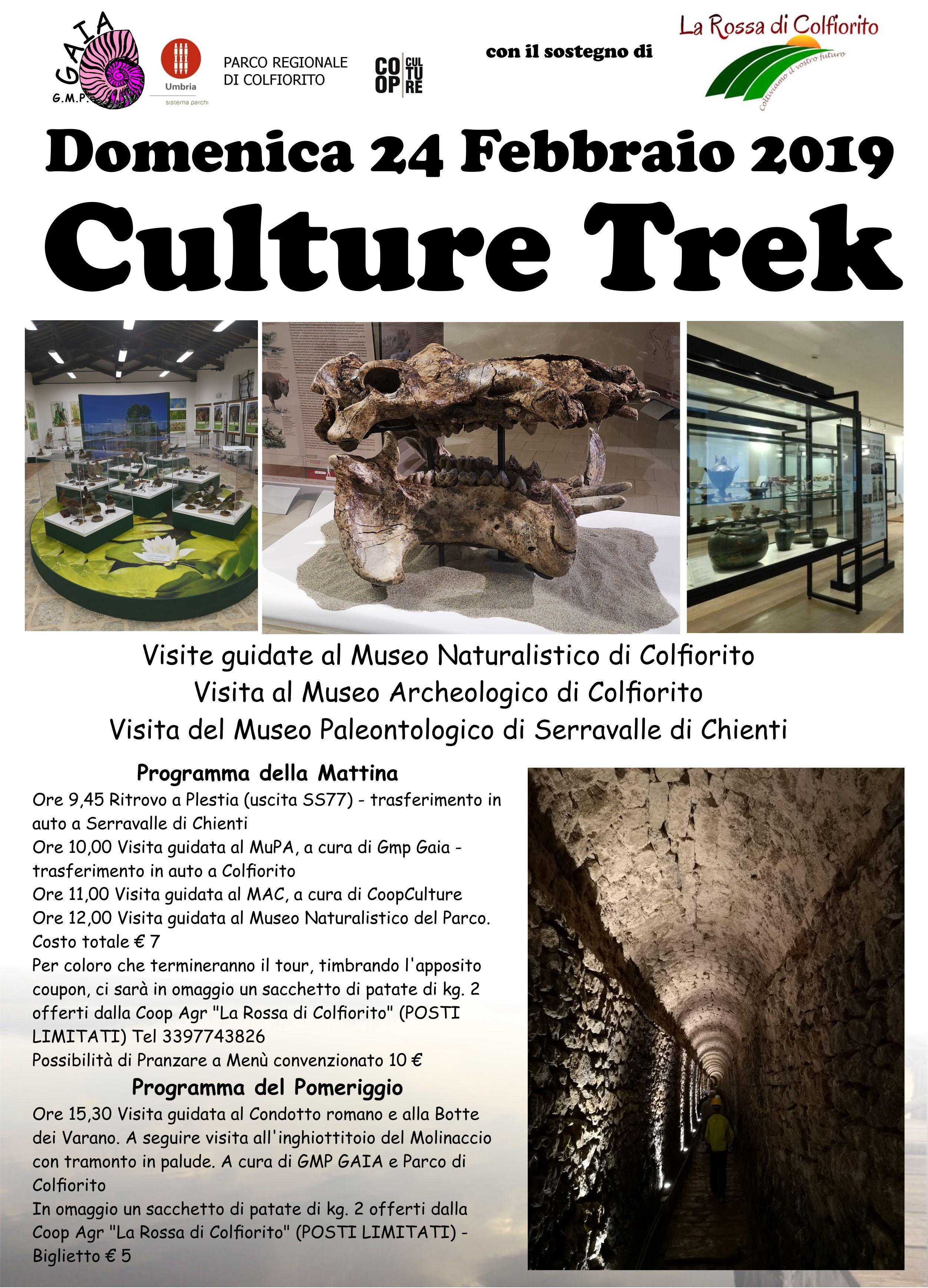 Culture Trek