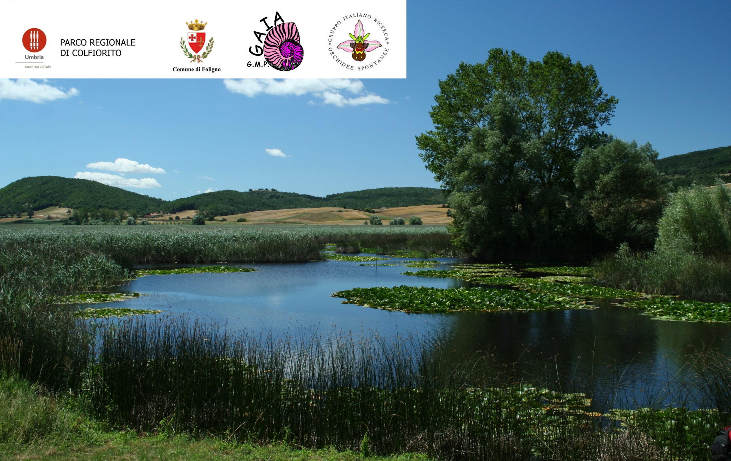Festa dei Boschi 2020 al Parco di Colfiorito – Associazione GMP GAIA APS